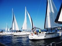 JCH11 regatta Carniola