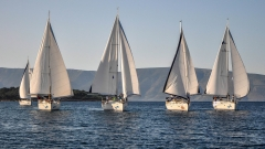 regatta Carniola
